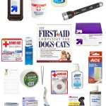 First Aid Care for pets, DIY first aid kit for dogs, canine first aid kit