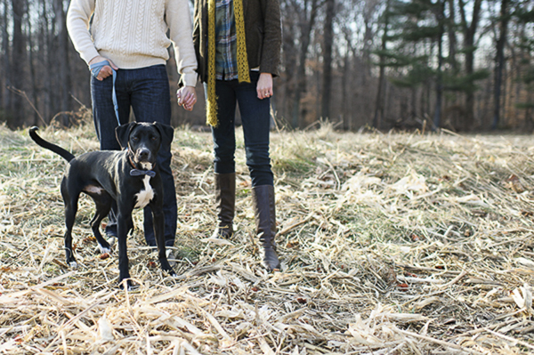 © Rachel Harrod Photography | Fall engagement photos with dog, country engagement session