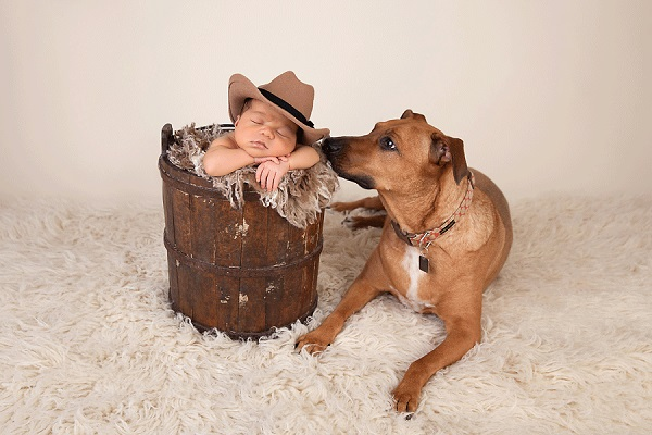 © Cathy Murai Photography | newborn photography session with dog, baby in cowboy hat and dog