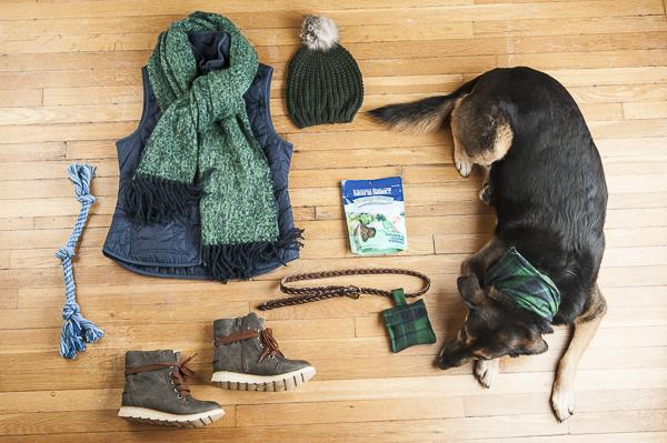 DIY  Dog Treat Bag Inspired By #NaturalBalance