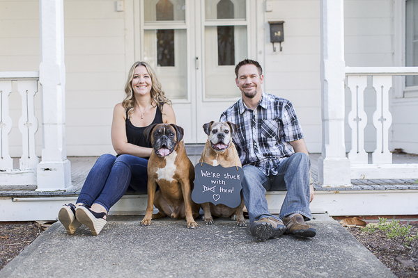 "© Heidi Calma Photography | Boxers ""we're stuck with them"" sign, engagement photos with dogs"
