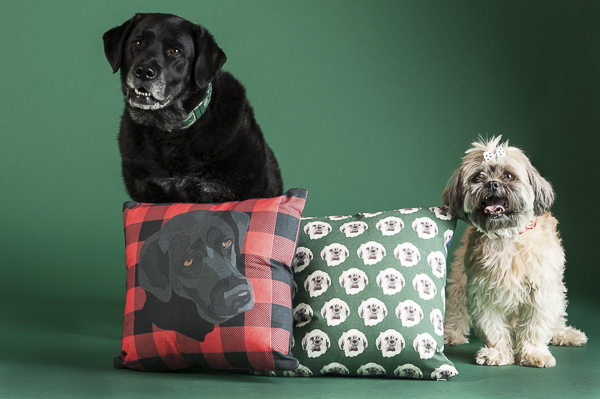 Black lab with buffalo plaid pillow, Shih Tzu decorative pillow
