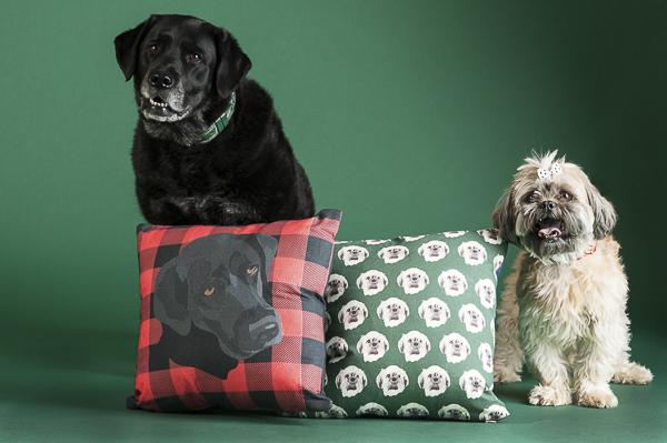 Black lab with buffalo plaid pillow, Shih Tzu decorative pillow