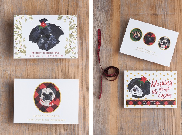 personalized pet holiday cards, Christmas cards with dog portraits
