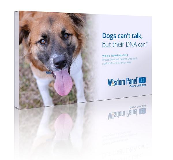 Wisdom Panel 3.0 test kit, dog DNA