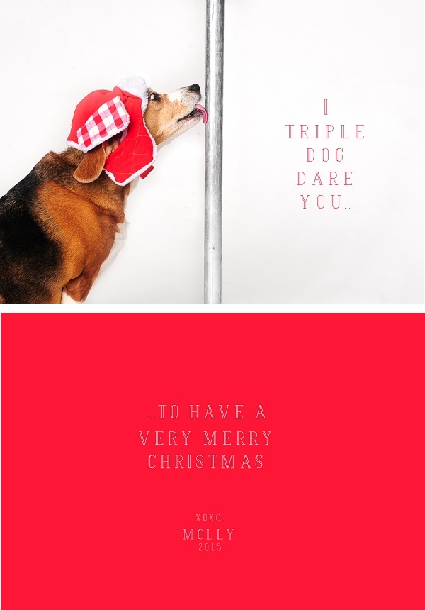 Beagle-wearing-red-hat-licking-metal-pole, A Christmas Story inspired card, beagle in hat, Christmas beagle