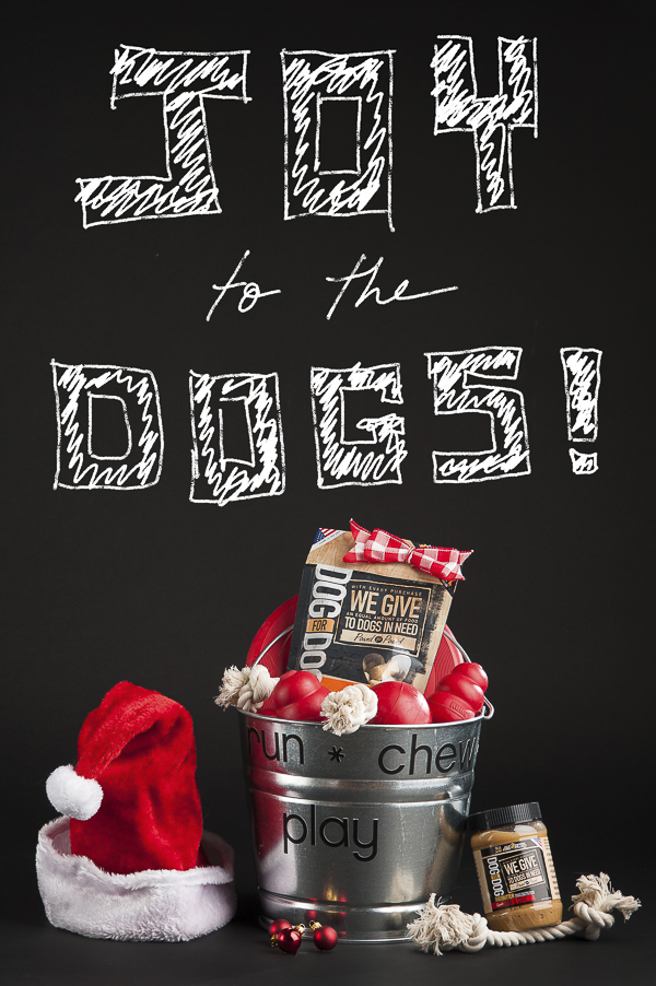 Gift Basket for shelter dogs, Kongs, Dog For Dog, Tractor Supply Company Holiday Gifts forshelter dogs-10