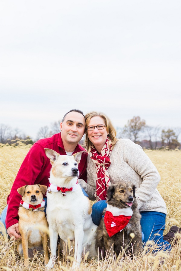 © Christy Nicole Photography | on location Christmas pictures, dog photography, holiday photos with dogs
