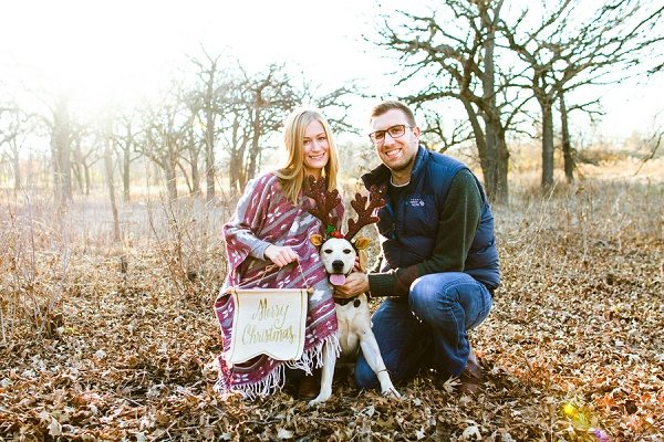 Sara Montour Photography |holiday photos with dogs, Christmas card picture