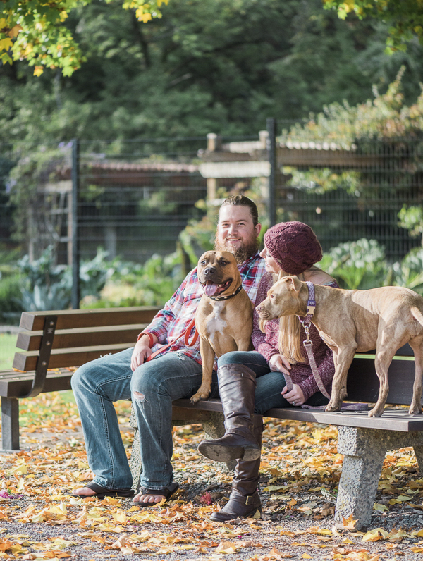 couple sitting with dogs on park bench