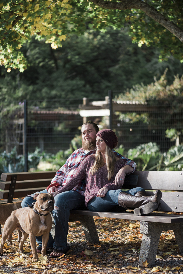Family photo with dogs, couple on bench, Pit bull owners