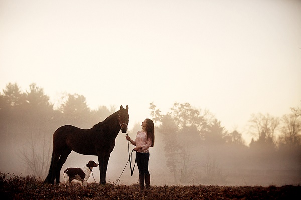 horse, dog, girl, on location photography