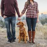 on-location-dog-portraits (8 of 9)