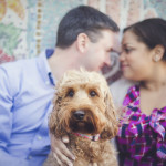 Labradoodle-engagement photos (3 of 6)