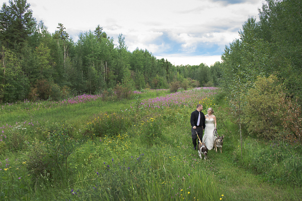 wedding dogs, bride, groom, dogs walking in meadow next to forest