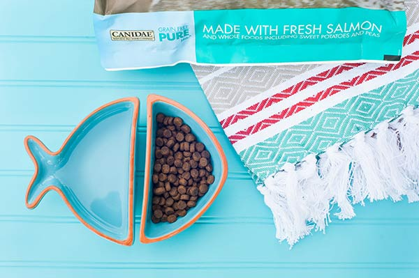 CANIDAE®-Grain-Free-Dog-Food-With-Fresh-Salmon-Daily-Dog-Tag, fish shaped dog food and water dishes on aqua background