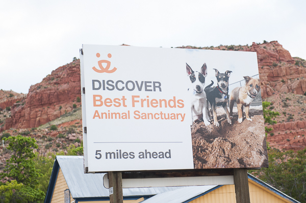 Best Friends Animal Sanctuary sign, media tour excitment
