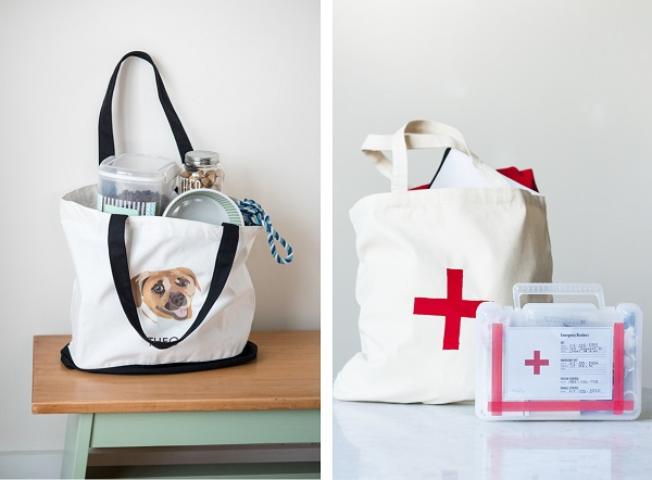 Bag for bugging out, first aid kit for dogs, emergency evacuations, preparing for disaster