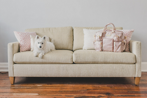 © Megan Travis Photography | Westie on light colored sofa, pink bag, throw pillows