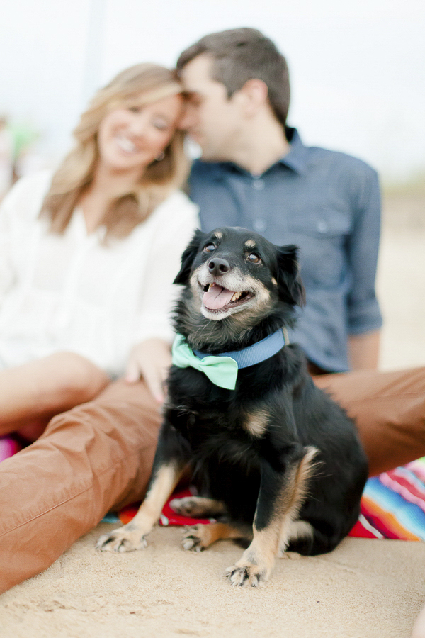 Luke & Ashley Photography, Beach engagement photos with dog, dog in bow tie