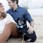 Luke & Ashley Photography, beach dog engagement