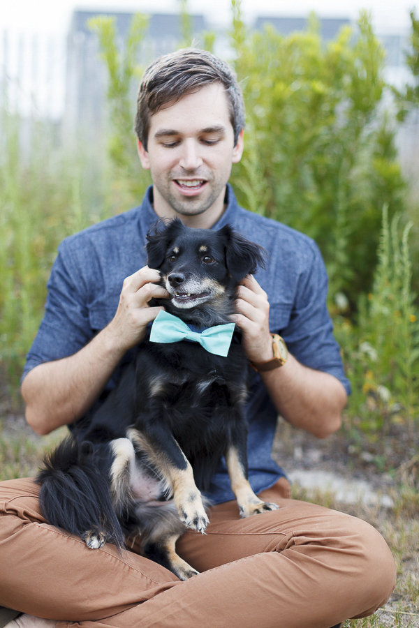 man's best friend, dog in bow tie