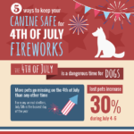Keeping Dogs Safe on July the 4th