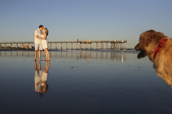Golden Retriever, Jersey Shore engagement session,