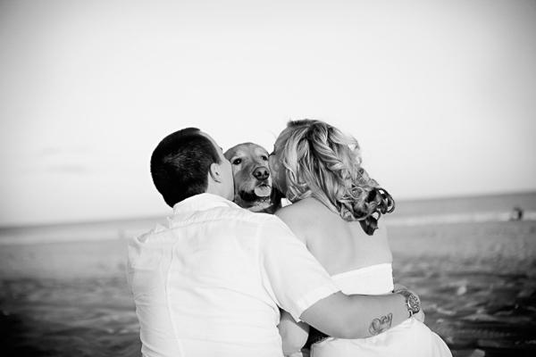 ©Devon John Photography | Golden Retriever being kissed, beach dog photography