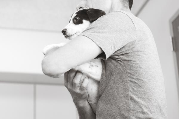 man holding hound mix puppy