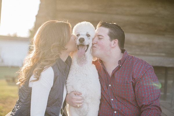 happy Poodle being kissed by engaged couple
