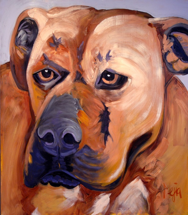 Lucas ©Cyrus Mejia | pit bull oil painting, Pits And Perception
