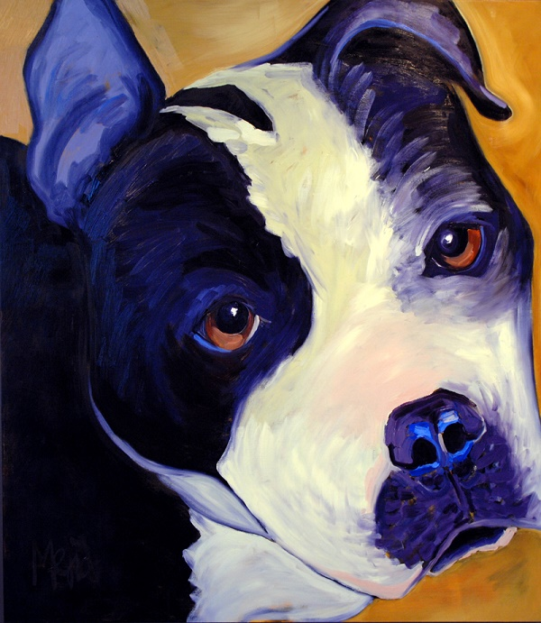 ©Cyrus Mejia | pit bull portrait, Pits And Perception,