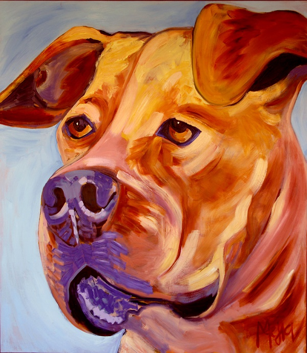 Squeaker © Cyrus Mejia, Pit bulls In Perception