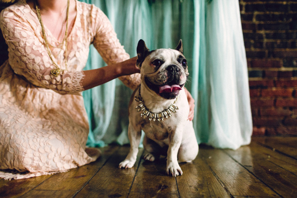 dog of honor, wedding dog