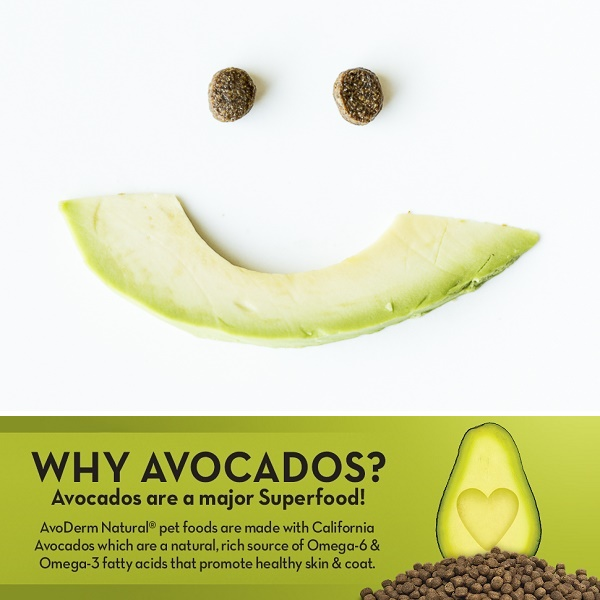 AvoDerm:  Avocados For Healthy Coat and Skin