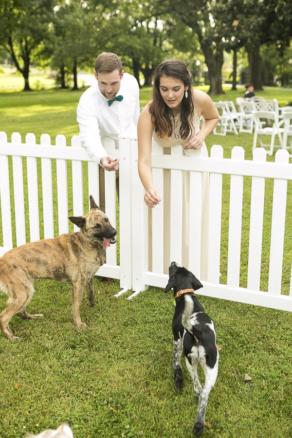 Styled Dog Themed Wedding, dog park