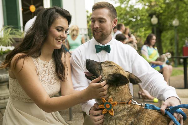 bride, groom, wedding dog wearing flower collar