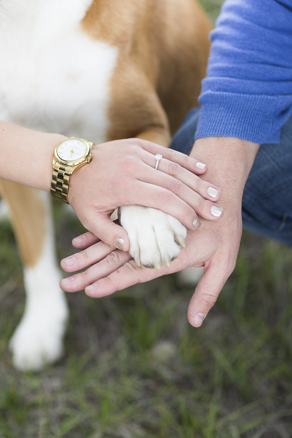 hands and paws, engagement ring, dog paw,