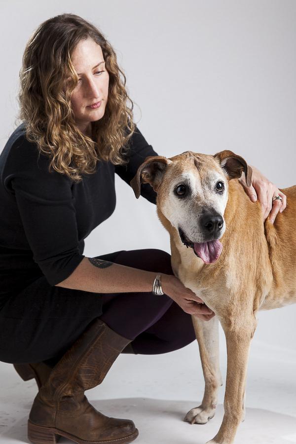 woman painting Boxer mix, Rhodesian Ridgeback senior dog in studio