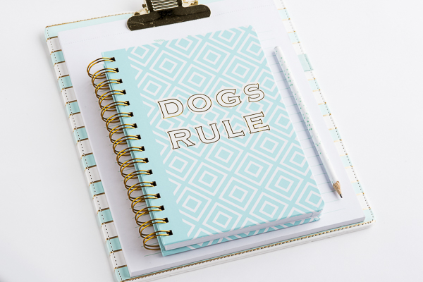 aqua spiral journal, aqua striped clipboard, dogs rule notebook, office accessories for dog lovers