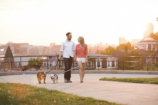 English Bulldogs on a walk, Boston engagement pictures