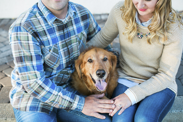 Golden Retriever sitting between engaged couple.