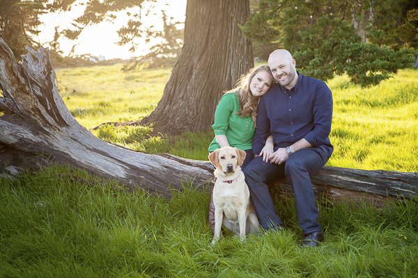 Yellow Labrador, couple sitting on fallen tree, engagement pictures with dog