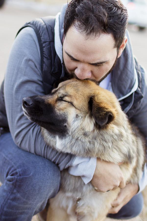 man kissing top of dog's head, man's best friend, human-dog bond