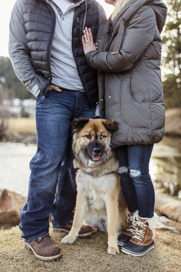 Husky-chow-mix-engagement-sitting between couple in winter coats
