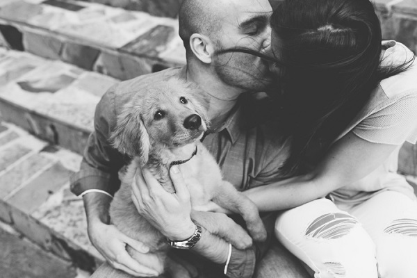 Erin Morrison Photography | couple sitting on steps kissing, man holding puppy