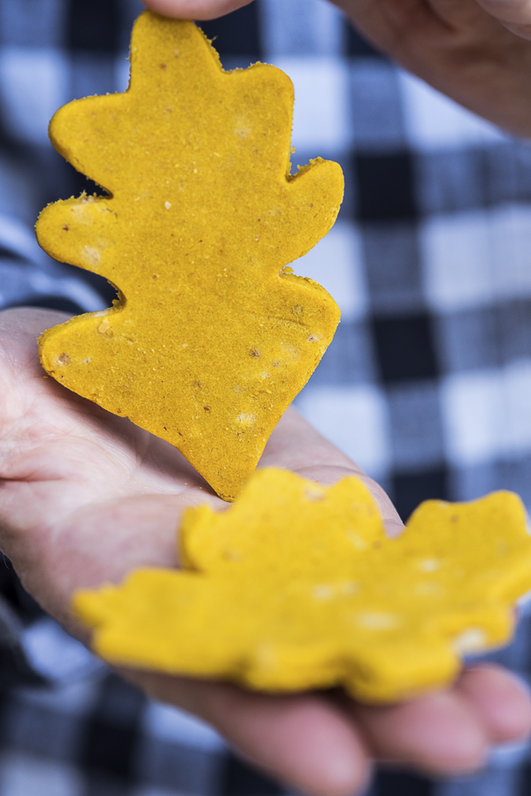 Fall treats for dogs, DIY pumpkin treats, cookie cutter dog treats
