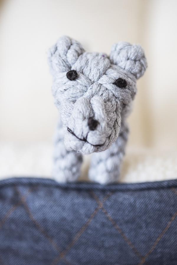 adorable rope dog toy   Daily Dog Tag - Natural Balance Dog Food