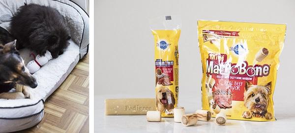 dogs enjoying treats,PEDIGREE® JUMBONE™, Marrobone treats, #PAWsomeGifts #ClausAndPaws